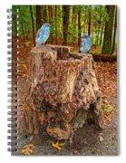 Bird Gossip Spiral Notebook