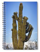 Bird House Condos Spiral Notebook