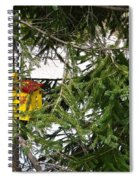 Bird House Spiral Notebook