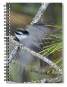 Bird In Action Spiral Notebook