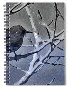 Bird In Digital Blue Spiral Notebook