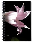 Lovely Lilies Bird In Flight Spiral Notebook