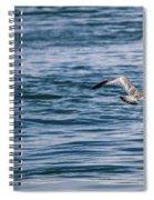 Bird In Flight Over Water Spiral Notebook