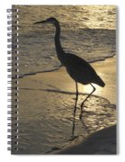 Bird In Paradise Spiral Notebook