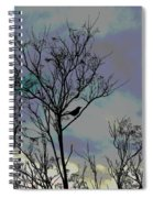 Bird In Tree Silhouette Iv Abstract Spiral Notebook