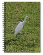 Bird Is The Word Spiral Notebook