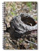 Bird Nest In Wild Rose Bush Spiral Notebook