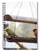Bird Of Europe.norway Spiral Notebook