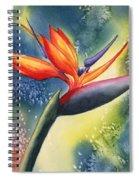 Bird Of Paradise Flower Spiral Notebook