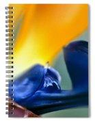 Bird-of-paradise Spiral Notebook