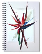 Bird Of Paradise Lily Spiral Notebook