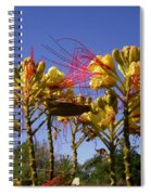 Bird Of Paradise Shrub Spiral Notebook