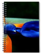 Bird Of Paradise Study 1 Spiral Notebook
