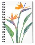 Bird Of Paradize Flowers Spiral Notebook