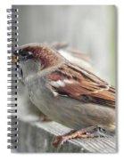Bird On A Fence Spiral Notebook