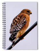Bird On A Wire With Attitude Spiral Notebook