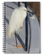 Bird On Boat Spiral Notebook