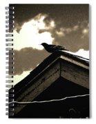 Bird On My Garage Spiral Notebook