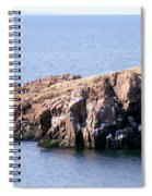 Bird Rock Spiral Notebook