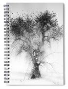 Bird Tree Land Bw Fine Art Print Spiral Notebook