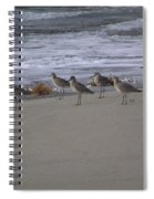 Bird Walk Spiral Notebook