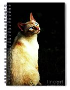 Bird Watcher Spiral Notebook