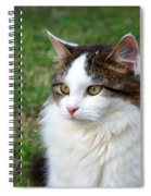 Bird Watching Spiral Notebook