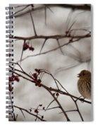 Bird With Berry Spiral Notebook