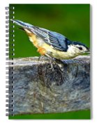 Bird With The Seed Spiral Notebook