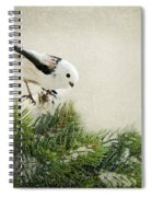 Birdie Stilllife Spiral Notebook