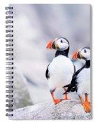Birdland Spiral Notebook