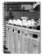 Birdman Of Lower Manhattan Spiral Notebook