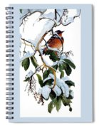 Birds 05 Varied Thrush On Arbutus Robert Bateman Sqs Robert Bateman Spiral Notebook