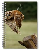 Birds 47 Spiral Notebook