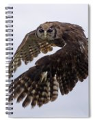 Birds 48 Spiral Notebook