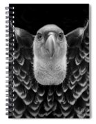 Birds 50 Spiral Notebook