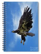 Birds 53 Spiral Notebook