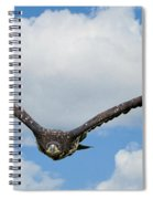 Birds 65 Spiral Notebook