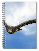 Birds 67 Spiral Notebook