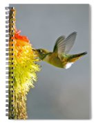 Birds And Bees Spiral Notebook