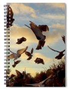 Birds And Fun At Butler Park Austin - Birds 1 Spiral Notebook