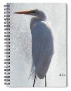 Birds And Fun At Butler Park Austin - Birds 2 Macro Spiral Notebook