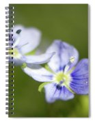 Birds Eye Speedwell Spiral Notebook