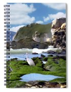 Bird's Eye View Spiral Notebook