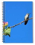 Bird's Eye View Spiral Notebook