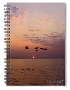 Birds Flying And Floating At Sunrise Spiral Notebook