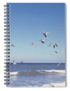 Birds Flying Over The Sea, Flagler Spiral Notebook