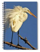 Birds - Great Egret Spiral Notebook