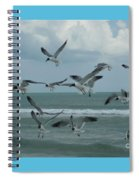 Birds In Flight Spiral Notebook