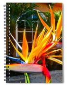 Birds In Paradise Spiral Notebook